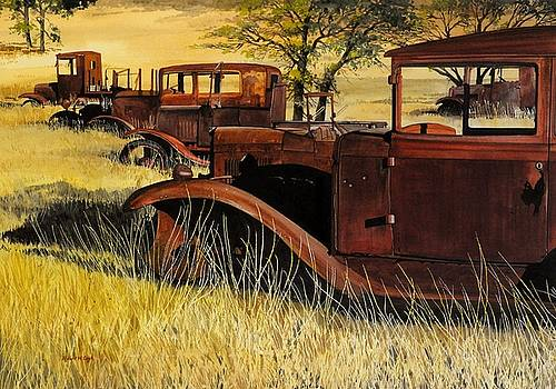 Rusty Meadows by Robert W Cook