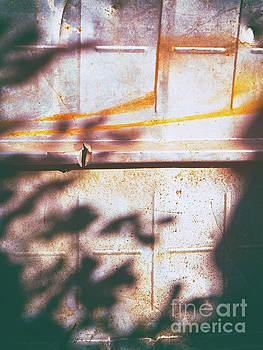 Rusty metal door with shadows by Silvia Ganora
