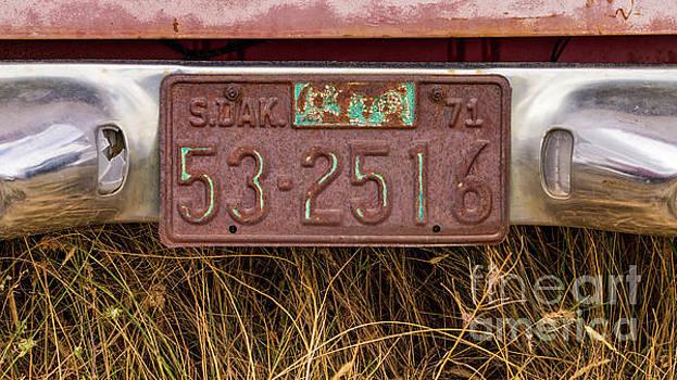 Rusty South Dakota Plate by Jerry Fornarotto