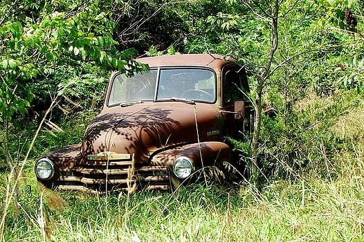 Rusty Truck by Paula Anderson