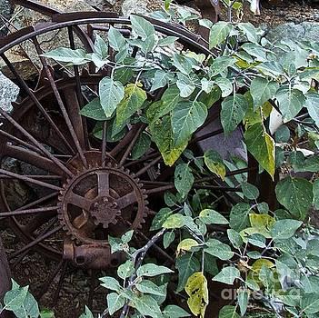 Rusty Wheel by Anthony Jones