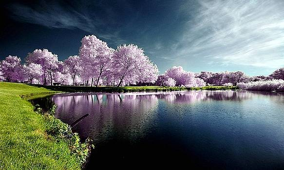 S.BasavaRaj Ireland - Landscape Photography by SBasavaRaj Ireland