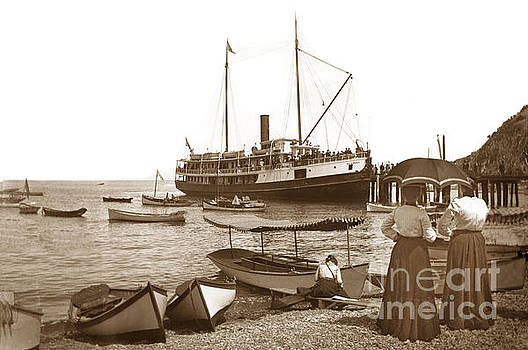 California Views Mr Pat Hathaway Archives - S. S. Hermosa at the dock in Avalon harbor circa 1902