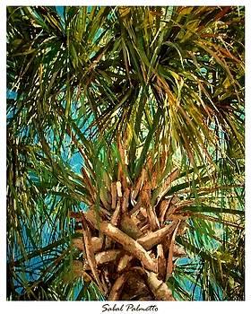 Sabal Palmetto by Eddie Glass