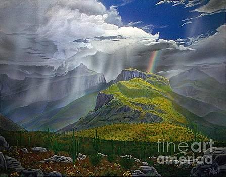 Sabino Canyon Storm by Jerry Bokowski
