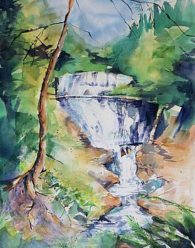 Sable Falls by Adam VanHouten