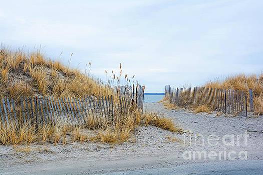 Sachuest Beach 1 by Lisa Kilby