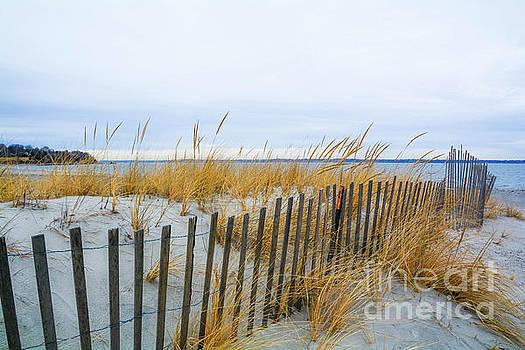 Sachuest Beach 2 by Lisa Kilby