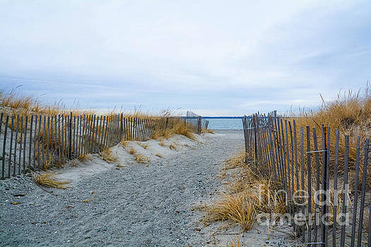 Sachuest Beach 4 by Lisa Kilby