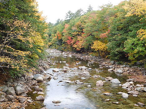 Saco River in Bartlett NH by Catherine Gagne