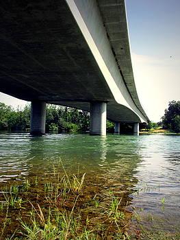 Joyce Dickens - Sacramento River At North Street Bridge