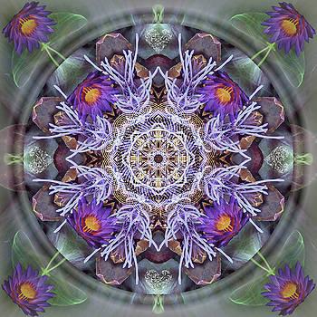 Sacred Emergence by Alicia Kent