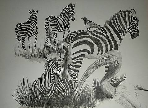 Sacred Ibis and Zebras by Joan Mansson