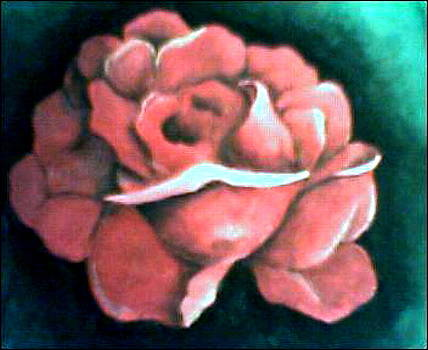 Sad Rose by Tamer Elsamahy