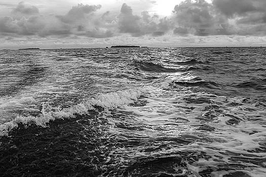 Sad Sea  by Ehab Amin