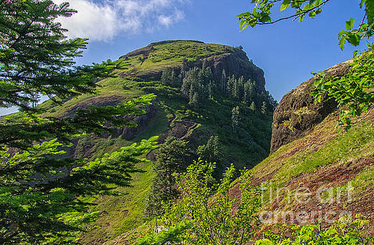 Tim Moore - Saddle Mountain