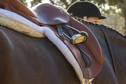 Saddled and Ready by Ed Gleichman