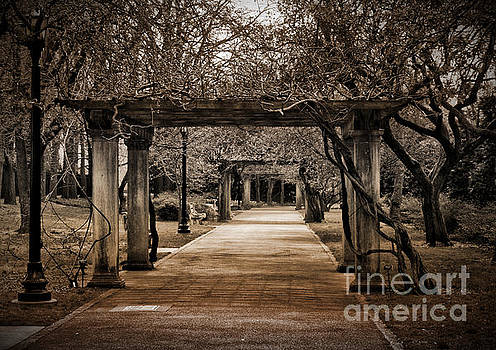 Onedayoneimage Photography - Safe Passage