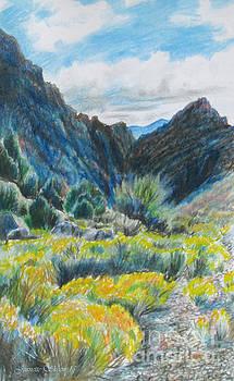 Sage'n Deserts of Utah  by Jeanette Skeem