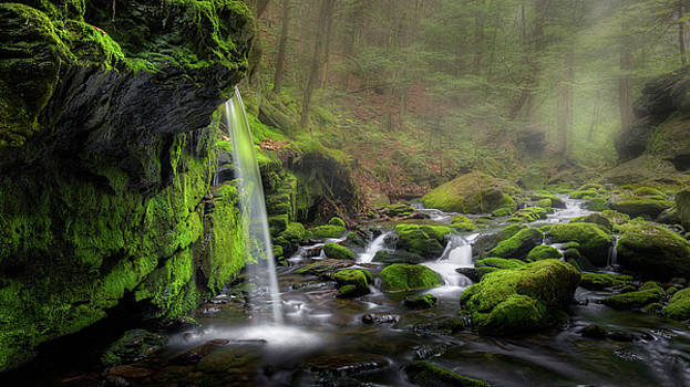 Sages Ravine by Bill Wakeley