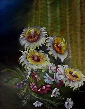 Saguaro Blossoms by Elma Sulek