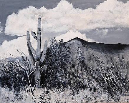 Saguaro Landscape by M Diane Bonaparte