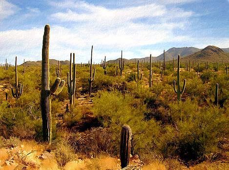 Kurt Van Wagner - Saguaro National Park