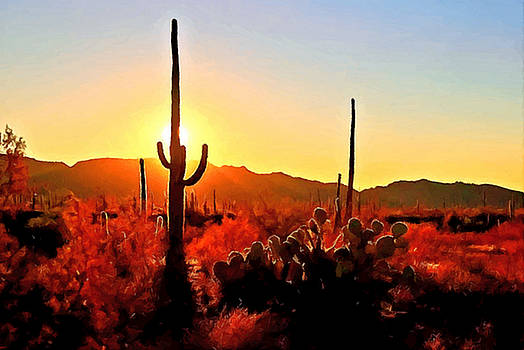 Saguaro National Park Sunset by Dr Bob Johnston