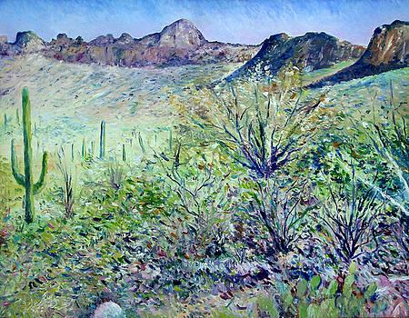 Saguaro National Park Tucson Arizona USA 2003  by Enver Larney