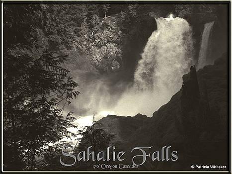 Sahalie Falls Oregon by Patricia Whitaker