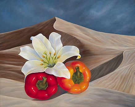 Sahara Fantasy by Birgit Seeger-Brooks