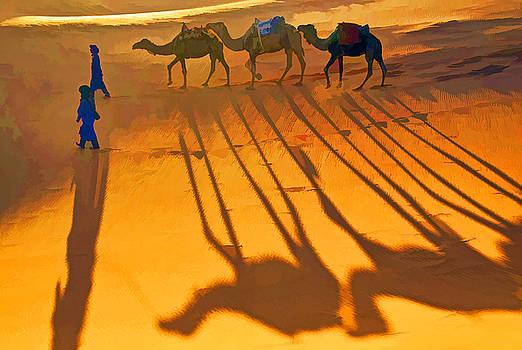 Dennis Cox - Sahara Shadows