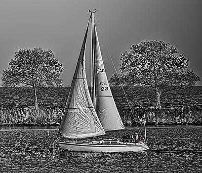 Sail by Alan Thal