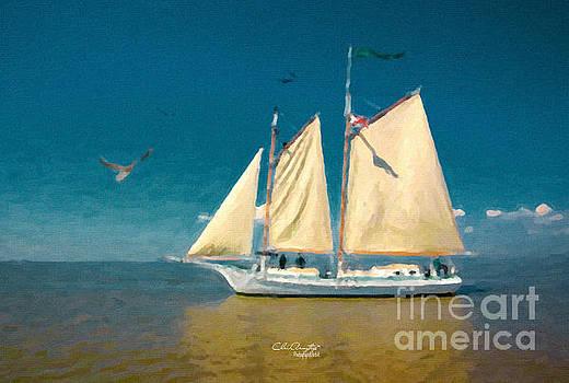 Sail Away by Chris Armytage