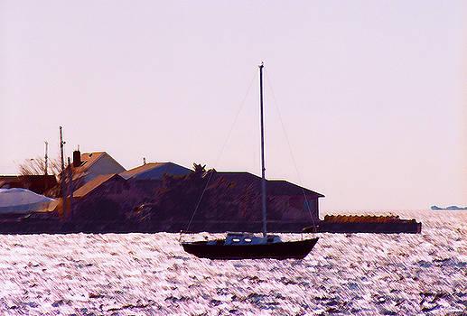 Sail Boat Bay by Steve Karol