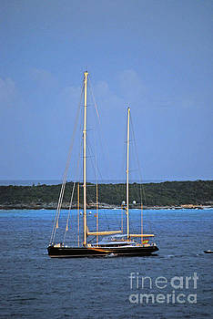 Gary Wonning - Sail Boats