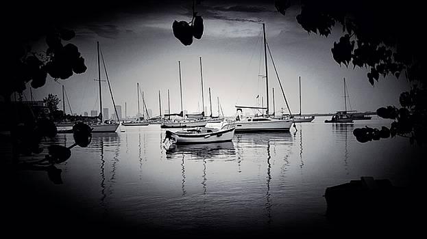 Sailboat Black And White by Roland Macias