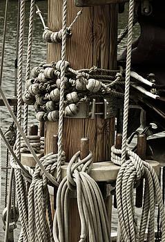 Sailboat Detail 3952 by Frank Tschakert