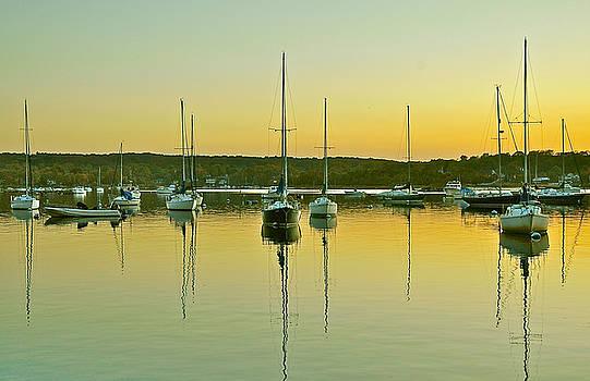 Sailboat Harbor by Tori Yule