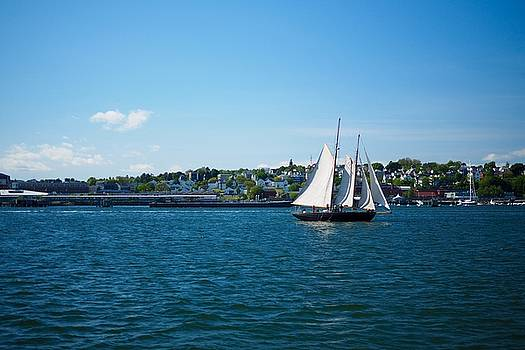Sailboat in Portland Harbor by Trace Meek