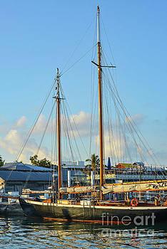 Bob Phillips - Sailboat, Mast, and Sails