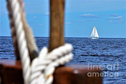 Sailboat Neighbor by Brigitte Emme