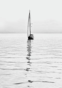 Sailboat On Calm Waters And Foggy Weather by Luisa Vallon Fumi