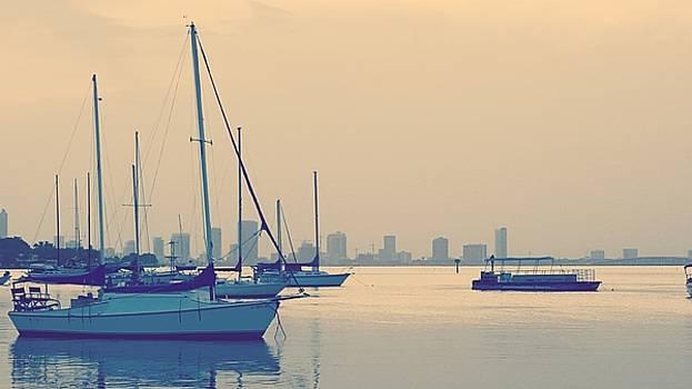 Sailboat by Roland Macias