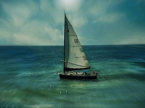 Sailboat by Sue Midlock