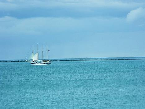 Sailboat Summer by Anna Villarreal Garbis