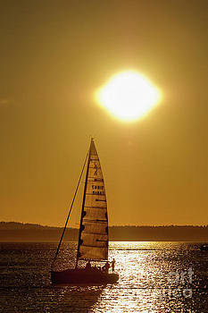 Sailboating During Sunset by Paul Conrad