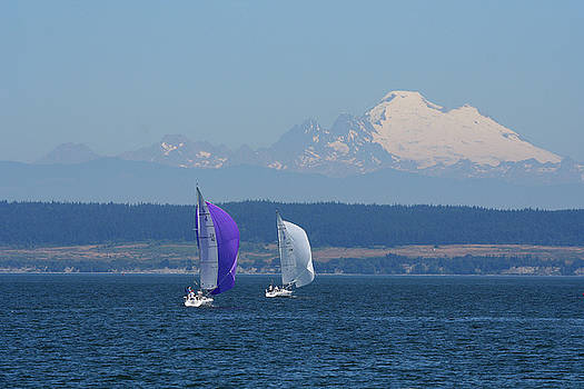 Sailboats and Mt. Baker BO1090 by Mary Gaines