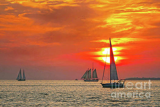 Sailboats at Key West Sunset by Catherine Sherman