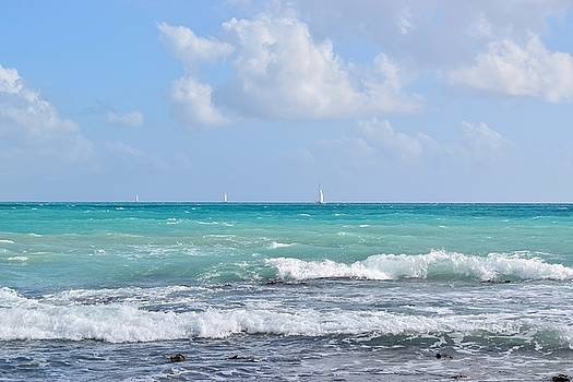 Sailboats in Caribbean sea by Inessa Williams